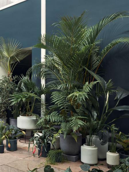 Botanique Plant Pot XS Tall D15 kvetináč
